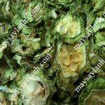 Mướp đắng sấy khô bằng phương pháp sấy lạnh, giữ màu xanh tự nhiên