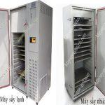 Sấy hoa quả nên dùng máy sấy lạnh hay máy sấy nhiệt là phù hợp