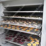 Máy sấy lạnh hoa quả Mactech, phù hợp cho kinh doanh vừa và nhỏ