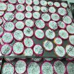 Cách sấy dẻo thanh long phù hợp cho yêu cầu sản xuất chất lượng cao