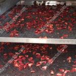 Dâu tây sấy lạnh, phương pháp sấy dẻo phù hợp với hoa quả