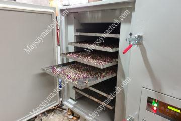 Máy sấy nụ hoa hồng, lựa chọn máy sấy nào cho phù hợp, hiệu quả