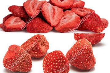 Sấy khô quả dâu tây hiệu quả trên sấy lạnh hay sấy thăng hoa