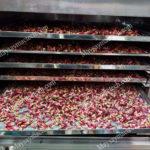 Hoa sâm ớt sấy lạnh đảm bảo khô chất lượng cao, giữ màu đẹp