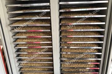 Hạt ngũ cốc sấy lạnh có đặc điểm như nào, có phải sấy chín không