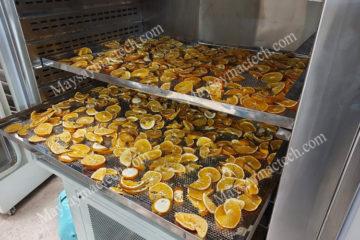 Cam vàng sấy lạnh, sấy khô làm detox hoa quả chất lượng cao