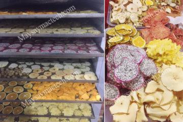 Máy sấy trà hoa quả, phù hợp sấy từ 10kg, 20kg, 100kg nguyên liệu