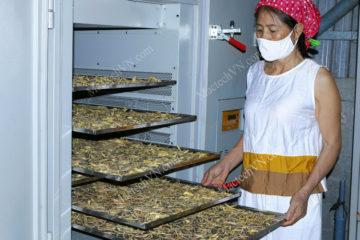 Máy sấy lạnh 20kg, thiết bị sấy phù hợp sản xuất quy mô nhỏ