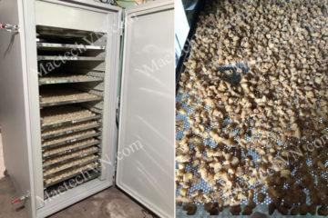Máy sấy hoa quả khô dẻo, lựa chọn máy theo loại hoa quả sấy