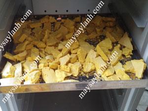 Sấy tinh bột nghệ bằng máy sấy lạnh cho chất lượng sấy khô tốt hơn