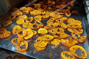 Cam sấy dẻo bằng phương pháp sấy lạnh, loại hoa quả sấy giá trị cao