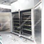 Tìm hiểu về dịch vụ cho thuê máy sấy lạnh của hãng Mactech