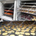 Máy sấy lạnh hoa quả cao cấp trên thị trường, thương hiệu Việt Nam