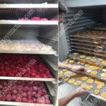 Công nghệ sấy lạnh hoa quả, phân biệt sấy lạnh và sấy thăng hoa