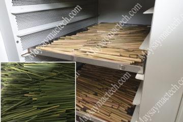 Máy sấy ống hút cỏ bàng, thiết bị sấy phù hợp từ hãng Mactech