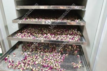 Nụ hoa hồng sấy lạnh và sấy thăng hoa có khác nhau nhiều ?