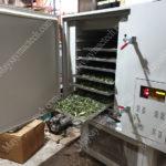 Máy sấy có bơm nhiệt là gì, ưu điểm và được ứng dụng khi nào
