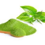 Cách sấy khô lá trà xanh bằng sấy lạnh hay sấy thăng hoa sẽ hiệu quả