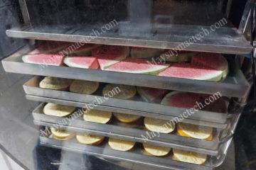 Máy sấy lạnh và máy sấy thăng hoa được sử dụng cho sản phẩm nào